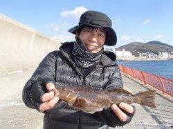 平磯海釣り公園 投げ釣りでアイナメ29cm