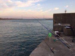 林崎漁港西部の突堤先端付近 ズボ釣りで28cmまでのアイナメを5尾