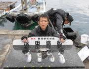 黒島の磯 ヤエンでアオリイカ0.4〜0.5kgを4ハイ