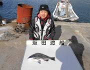 黒島の磯 オキアミをエサにチヌ45cm