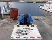 黒島の筏 ナイスサイズのチヌ3枚の釣果