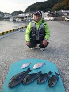 和歌山由良神谷の磯 カゴ釣り、フカセ釣りで40UPの良型グレ