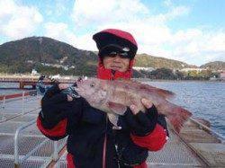 須磨海釣り公園 ウキ流し釣りでコブダイ40cm