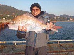 須磨海づり公園 ウキ流し釣りでマダイ66cm