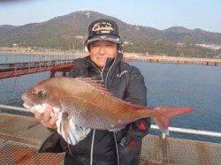 須磨海釣り公園 ウキ流し釣りで美味しい正月マダイ