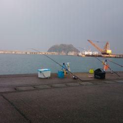 香住東港へ今年初の日本海遠征釣果 投げサビキでアジ狙い