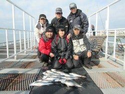 尼崎市立魚つり公園 早朝ハネの喰い気高く、70オーバーのスズキも出ました!