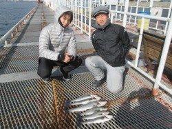 尼崎市立魚つり公園 エビ撒きのハネ、水温が安定し釣れる棚はほぼ4ヒロ前後