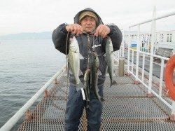 尼崎市立魚つり公園 午前中を中心ににハネが絶好調!