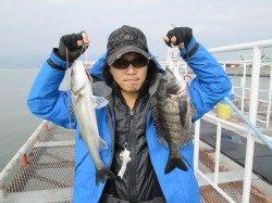 尼崎市立魚つり公園  エビ撒き釣りでハネ52cm&チヌ42cm