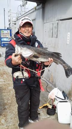 岸和田一文字 沖の北で良型アイナメ 旧赤灯にてのませでスズキ72cm