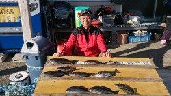 大平瀬、灘のコーデでのオキアミフカセ釣果
