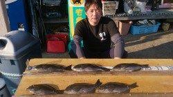 萩尾の磯でオキアミフカセ グレが釣れています