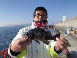 平磯でシラサをつかったウキ釣り メバル24cm
