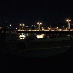 2015年初釣行は淡輪漁港でスタート 開始早々メバルがヒット!