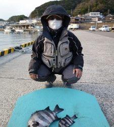 神谷一文字 カゴ釣りでグレ&イシダイの釣果