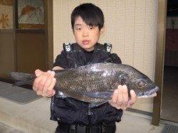 湯浅の磯 カルモ島にて小学生が良型チヌゲット☆