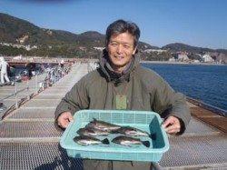 須磨海づり公園 ナイスサイズのメバル釣果