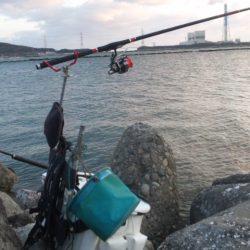 河口にて、チヌフカセ釣り!