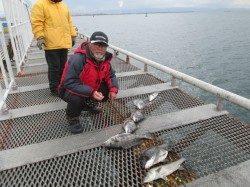 尼崎市立魚つり公園 エビ撒きで良型ハネ&チヌ爆釣!