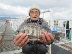 尼崎市立魚つり公園 エビ撒き釣りでハネとチヌの釣果