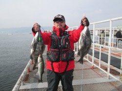 尼崎市立魚つり公園 チヌとセイゴ、ほかタコの姿も