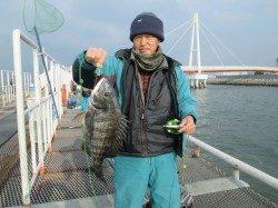尼崎市立魚つり公園 お見事51cmの年無し!