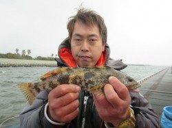 尼崎市立魚つり公園 アイナメ33cm!