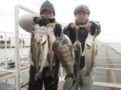 尼崎市立魚つり公園 ウキ釣りでハネ・チヌ