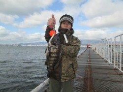 尼崎市立魚つり公園 シラサエビでチヌ・ハネ
