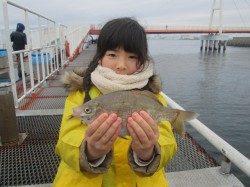 尼崎市魚つり公園  ウキ釣りでハネ・セイゴの釣果