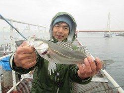 尼崎市立魚つり公園でセイゴ〜難しい日の値打ちある1匹!