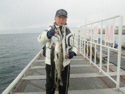 尼崎市立魚つり公園のエビ撒きでスズキ 春までは大物の期待大♪