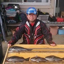 萩尾の磯でのグレ釣果 大平瀬で18尾、大イナヤで40cmなど