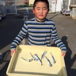 和歌山マリーナシティ海釣り公園 サビキ釣りでイワシ