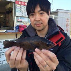 和歌山マリーナシティ海釣り公園 メバルの釣果
