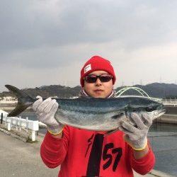 和歌山マリーナシティ海洋釣り堀にてメジロの釣果