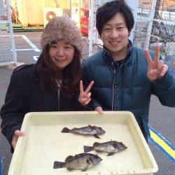 和歌山マリーナシティ海釣り公園 エビ撒きでメバル