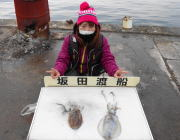 黒島の筏  ヤエンでアオリイカ&コウイカ