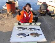 黒島の磯 フカセでチヌ・ウマヅラハギ
