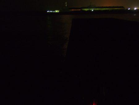 1万トンでの夜釣り