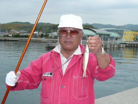 津名港でキス狙い