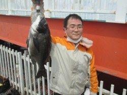 尼崎釣り公園 チヌの釣果が出てます