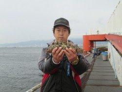 尼崎市立魚つり公園 ズボ釣りでポン級アイナメをキャッチ!