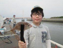 尼崎市魚つり公園 エビ撒きでハネ・セイゴ・キビレ