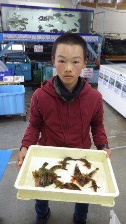 堺漁港のガシラ釣果!地元中学生3人衆!