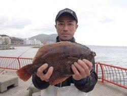 神戸市立平磯海づり公園 マムシをエサにカレイ39cm!
