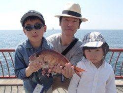平磯海釣り公園 投げ釣りでマダイ36cm