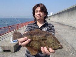 神戸市立平磯海づり公園 投稿