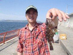 神戸市立平磯海づり公園 投げ釣りでガシラ